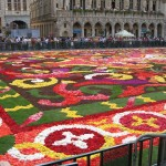 """Wonderous flowered carpet display in Brussels"""