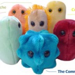 """""Afraid of germs/disease get a stuffed virus"""